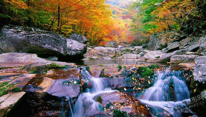 韩国秋季旅游胜地推荐——深山之中赏枫叶