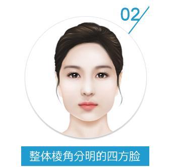脸部骨头结构图片